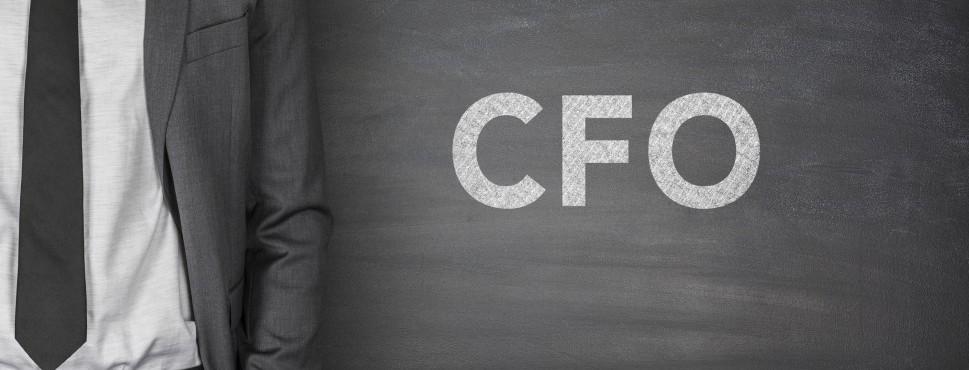 Fractional CFO/Finance Leadership Support